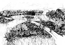 Jardim e Ripado do Aquário para o Parque do Flamengo. Nanquim sobre papel vegetal 91x128 cm<br />Roberto Burle Marx, José Tabacow, Haruyoshi Ono  [Acervo Burle Marx e Cia Ltda]