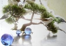 Mônica Rubinho, Espaços para Pensamentos Simples, 2008 (fotografia, colagem, vidro, madeira - díptico, 61 x46cm)