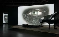 Douglas Gordon - Phantom, 2011<br />Courtesy Studio lost but found and Galerie Yvon Lambert -  Paris  [Studio Lost but Found and Katharina Kiebacker -  VG Bild-Kunst Bonn]