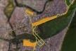 """Projeto urbano, com vias expressas e áreas de expansão imobiliária<br />Foto divulgação  [vídeo """"Recife, cidade roubada""""]"""