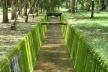 Canais que cruzam o Jardim Botânico