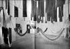 A revista Módulo  publicou a participação brasileira em edição de 1964, abrindo uma reportagem de Jayme Maurício com esta foto em página dupla [Módulo n. 38, Rio de Janeiro, dez. 1964, p. 38-44.]