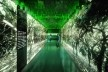 Interna núcleo floresta<br />Metro Arquitetos Associados