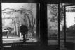 Vidraça de Los Guindos e jardim<br />Foto Rodrigo Díaz Wichmann