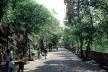 Parque Chapultepec, Cidade do México. Alameda ladeando a encosta rochosa