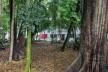 Casa Modernista na Rua Santa Cruz, São Paulo. Arquiteto Gregori Warchavchik<br />Foto Leonardo Finotti
