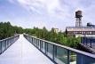 A vegetação se regenera em meio à paisagem industrial, justificando o roteiro turístico Industrie-natur [IBA Emscher Park]