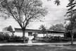 Residência Milton Guper, São Paulo, 1951-1952. Arquitetos Rino Levi, Roberto Cerqueira César e Luiz Roberto Carvalho Franco<br />Foto divulgação  [Acervo digital Rino Levi]