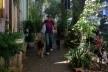 Jardim na calçada, gentileza urbana em São Paulo<br />Foto Abilio Guerra