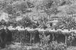 Fig. 9 - Legenda: Detalhe de um postal de 1905, mostrando as Palmeiras-de-Canárias plantadas sobre bacias subterrâneas ao longo da via principal [Cátedra Gaudí]