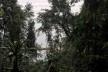 Vista de Ilha Grande<br />Foto Abilio Guerra