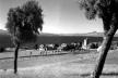 A situação paisagística do Centro Cívico de Bariloche que Estrada concebe, 1940