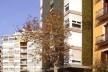 El edificio Mediterráneo visto desde la calle Conde Borrell<br />Foto Nicolás Sica Palermo