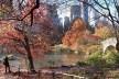 Alexandrina Mori no Central Park, Nova York, Estados Unidos, 2014<br />Foto Victor Hugo Mori