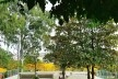 Readequação do Parque Municipal Raul Seixas, São Paulo SP Brasil, 2019. Secretaria do Verde e Meio Ambiente – Departamento de Implantação, Projetos e Obras/ Secretaria Municipal da Pessoa com Deficiência<br />Foto Leon Rodrigues  [Secom]