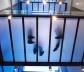 Fundação Caixa Galícia, La Coruña. Arquiteto Nicholas Grimshaw