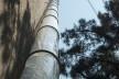 Subsolanus, Cidade do México, 2015-2016. Arquitetos Anna Juni, Enk te Winkel e Gustavo Delonero (Vão Arquitetura) + Marina Canhadas<br />Foto Luis Gallardo  [LGM Studio]
