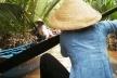 Canais no Delta do Mekong<br />Foto Lucia Maria Borges de Oliveira