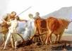 Pintura do final do século XVIII imbuída da ideologia fisiocrática, enaltecedora das virtudes das atividades agrícolas [JEAN, Georges. Op. cit., p. 63]