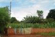 Destinação de lote exclusivamente a cultivos agrícolas em Ângulo/PR<br />Foto das autoras