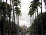 Praça da Liberdade. Alameda das palmeiras imperiais, ao fundo o Palácio da Liberdade<br />Foto Benedito Tadeu de Oliveira