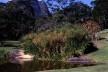 Os projetos de paisagismo são um dos assuntos centrais que perpassam a correspondência de Roberto Burle Marx – caso dos jardins de Odette Monteiro, em Correas, Petrópolis, hoje abandonados<br />Foto de Andrés Otero  [Acervo GMD]