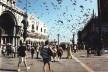 Piazza San Marco, Veneza: som da revoada dos pássaros<br />Foto P A Rheingantz