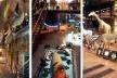 Grande Galeria da Evolução, Paris. Diversidade da vida marítima e terrestre
