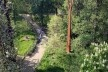 Kew Gardens, Xstrata Walkway Treetop, Londres<br />Foto Francine Sakata