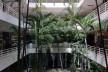 Galeria Metrópole, jardim em pátio interno, São Paulo, 1960. Arquitetos Salvador Candia e Giancarlo Gasperini<br />Foto Abilio Guerra