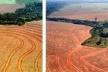 Desmatamento ilegal para plantação de soja em Novo Progresso, Pará.<br />Foto Alberto César.  [Greenpeace]