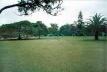 Praça com massa de vegetação ao fundo. Parque do Ibirapuera<br />Foto Wesley Macedo, 2004