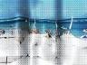 """Porto de Galinhas PE. Quando o comércio de escravos foi proibido no Brasil sempre corria boatos no Recife: """"tem galinha d'Angola no porto""""... os boatos, as imagens e a interatividade. Os fatos nunca acontecerão naturalmente. Isto é fato. Deformação topoló<br />Foto Marcelo Maia"""