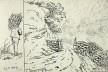 Ilha de Santa Helena, bico de pena e aguada, n. 133, 27 maio 1808<br />William John Burchell  [Collection Museum Africa, Johannesburg]