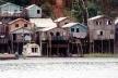 Figura 3 – Casas sobre palafitas no Rio Negro, adequadas às cheias do rio<br />Foto Beatriz Santos Oliveira