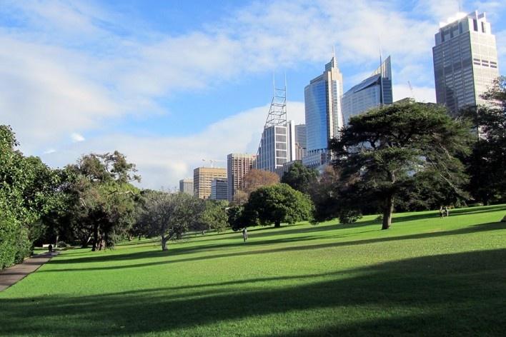 Royal Botanic Garden, Sidney<br />Foto Gabriela Celani