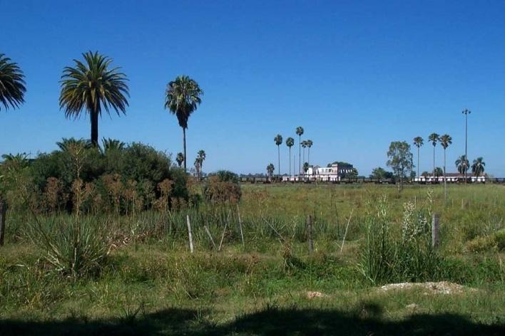 Foto 3: Vista em direção à casa-grande desde a igreja. Pode-se ver à esquerda o coreto escondido pela mata, os vagões ferroviários e as fachadas da casa do Visconde antes de ruírem