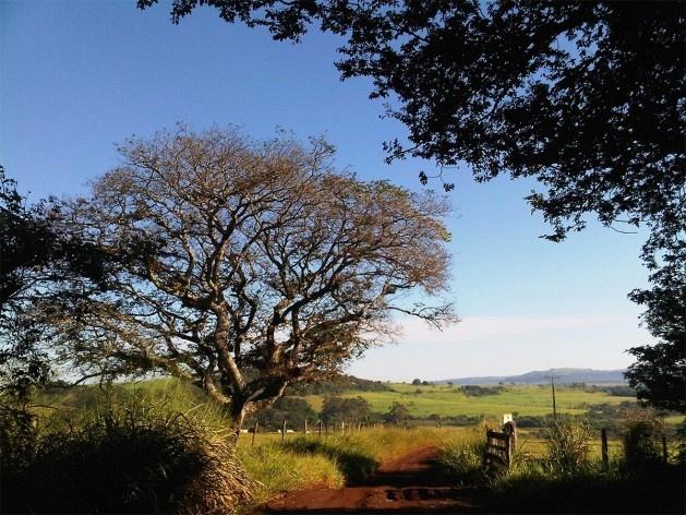"""Ensaio """"Paraíso escondido""""<br />Foto Abilio Guerra"""