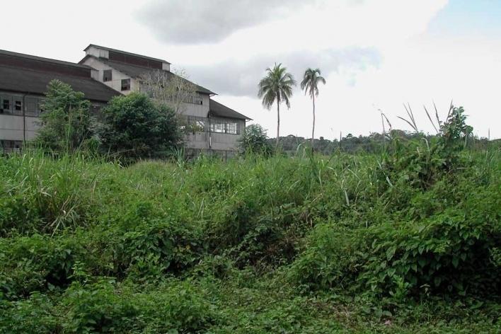Fordlandia, exemplo de destruição e construção<br />Foto Carlos Teixeira