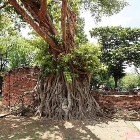 Templo de Wat Mahathat, Birmânia<br />Foto Victor Hugo Mori