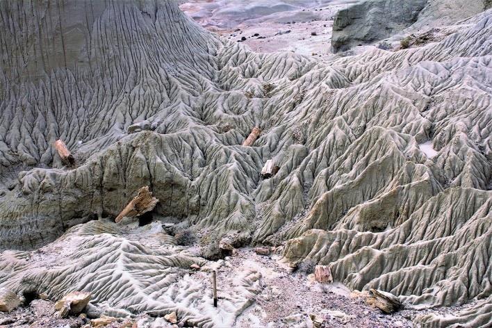 Escombros de madeira petrificada em diversas alturas. Bosque Petrificado, Sarmiento, Estado de Chubut, Argentina<br />Foto Diana Souza