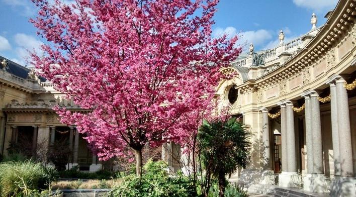 Jardim interno do Petit Palais, fevereiro 2014<br />Foto Silvia Palazzi Zakia