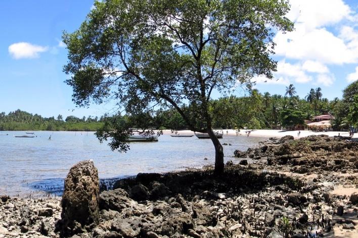 Praia em Boipeba<br />Foto Abilio Guerra