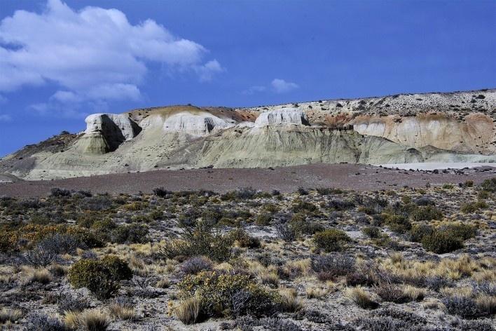 Estepe patagônica. Bosque Petrificado, Sarmiento, Estado de Chubut, Argentina<br />Foto Diana Souza