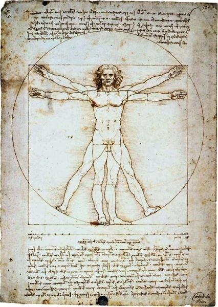 Homem vitruviano, segundo Leonardo da Vinci