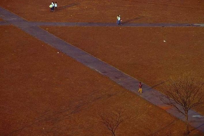 Trilhas de pedestres na esplanada dos ministérios durante a estação seca, 1993<br />Foto Salomon Cytrynowicz