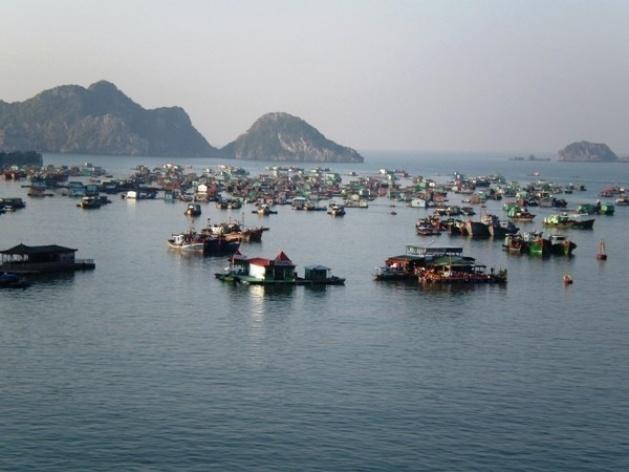 Cat Ba, barcos e casas flutuantes em frente à cidade <br />Foto Lucia Maria Borges de Oliveira