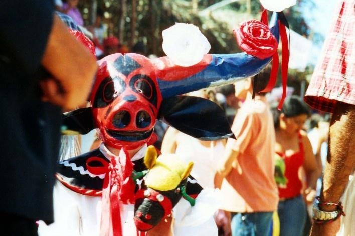 Mascaradinho com cavalo de pau<br />Foto Nádia Mendes de Moura, 2005
