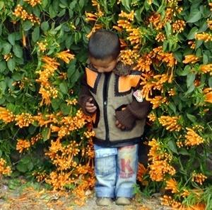 Parque nos arredores de Chandigarh<br />Foto de Denise Teixeira e Luís Barbieri
