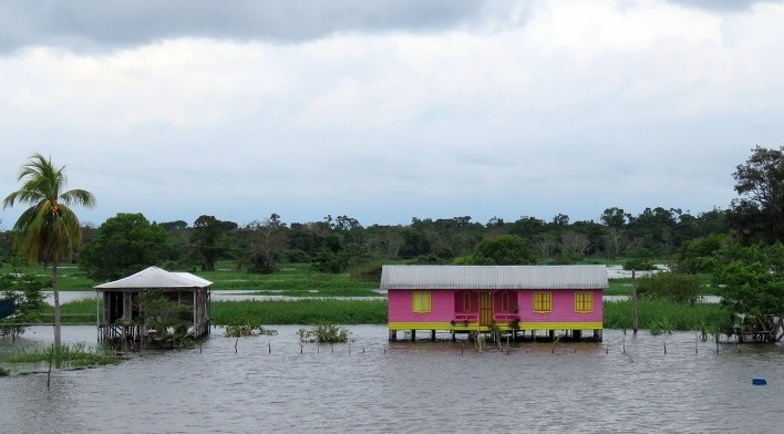 Margem do Rio Amazonas<br />Foto Eduardo Oliveira Soares, julho 2019